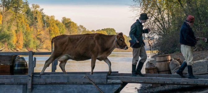 «First Cow» : un film très au lait, au lait !